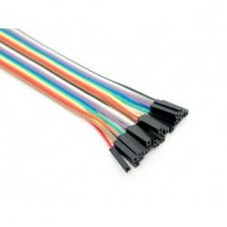 10 Pin Female - Female Splittable Jumper Wire