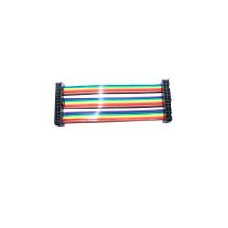 GPIO Rainbow Cable - 10cm